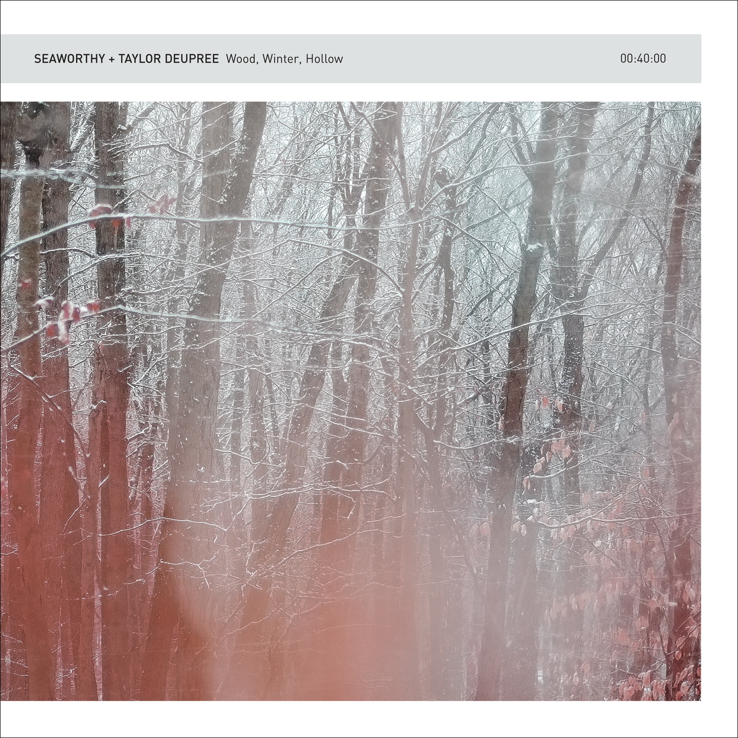 Seaworthy + Taylor Deupree – Wood, Winter, Hollow