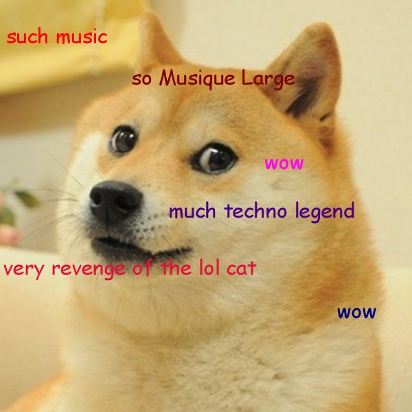 Doge Laurent Garnier