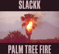 Slackk_Palm_Tree_Fire_Local_Action_Album_Artwork