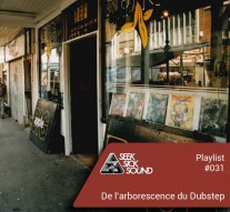 SSS Playlist #031 De l'arborescence du Dubstep