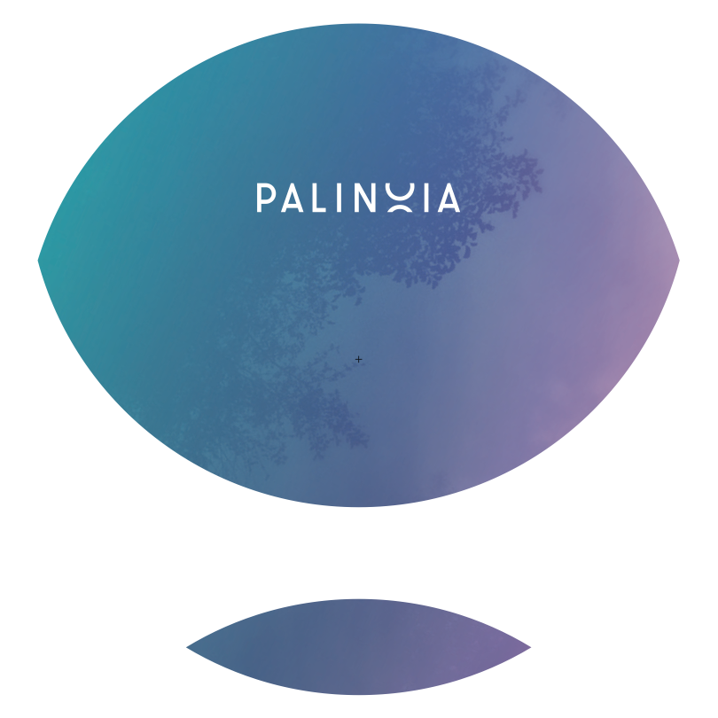 artwork_heuristicep_palinoia001_side-a