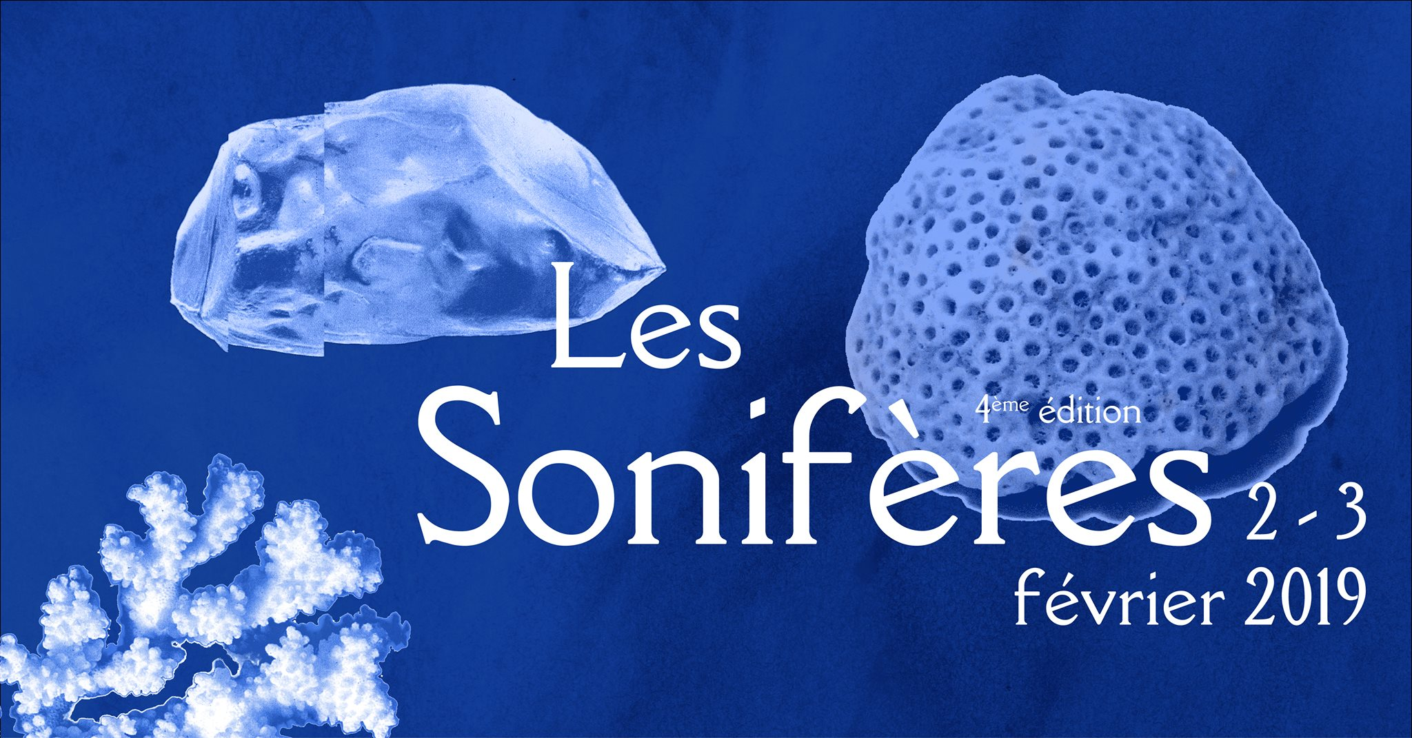 Interview : Les Sonifères