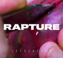 HTNdig001_LIFECUTTER Rapture EP Artwork