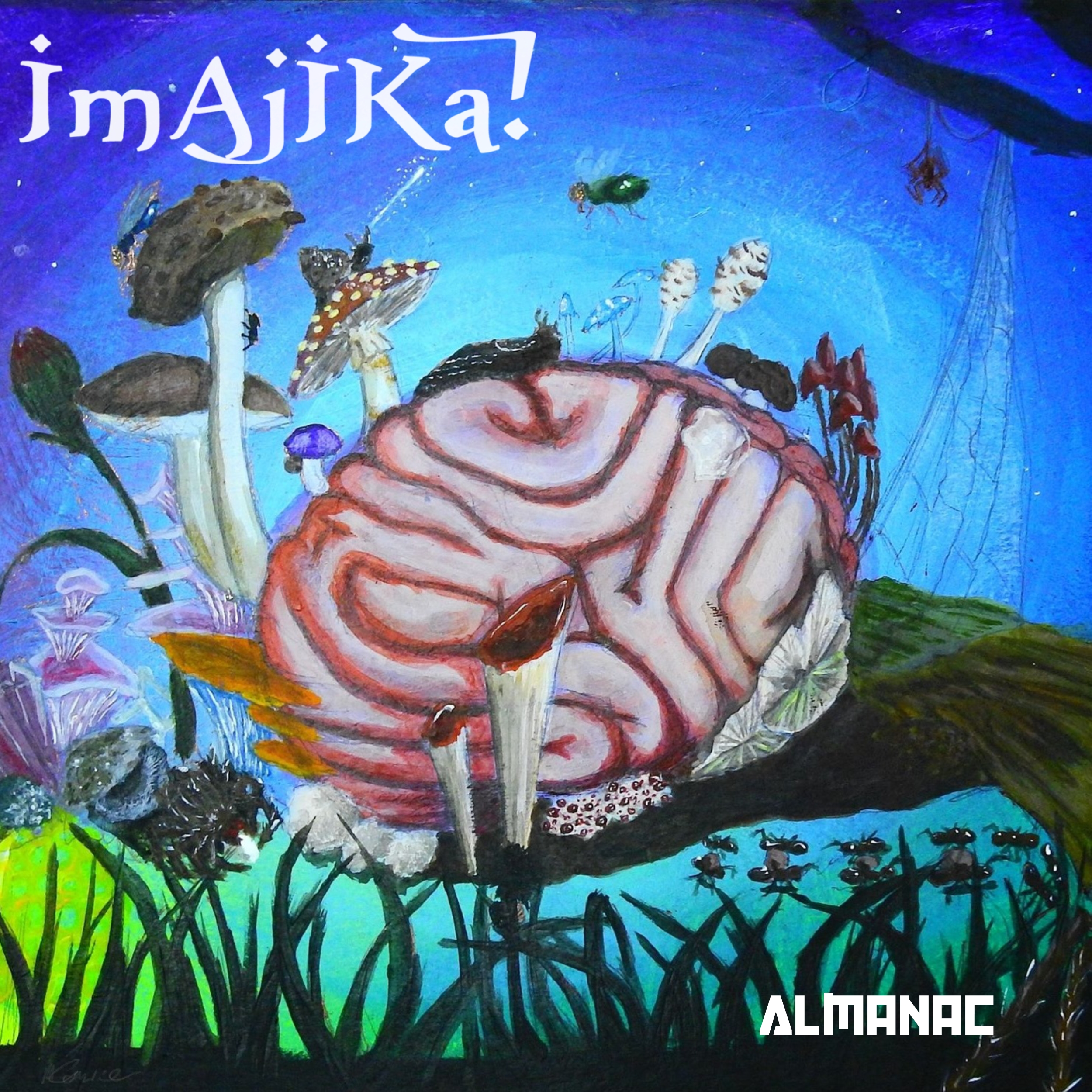 Imajika Almanac Artwork