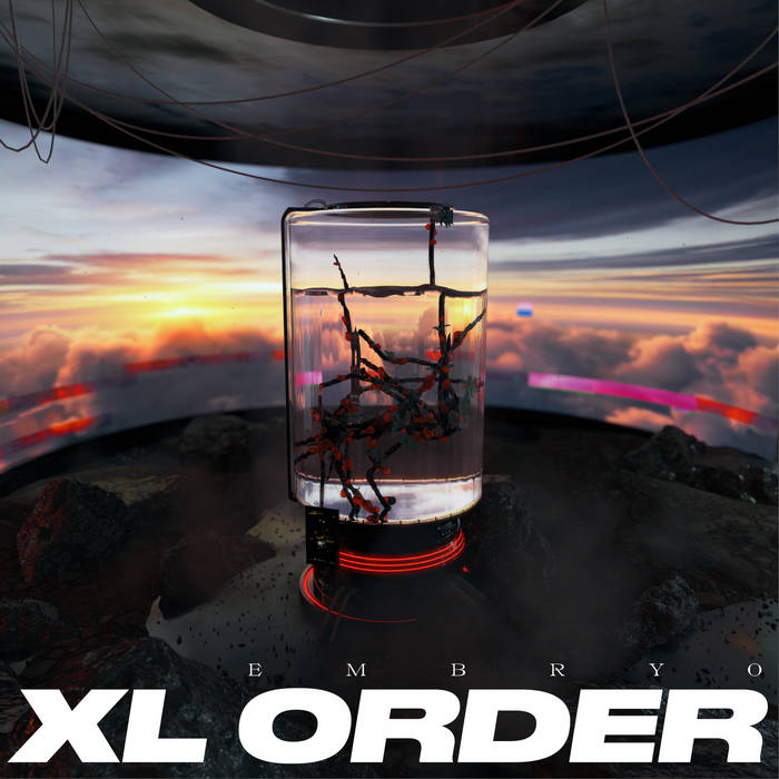 xl order embryo sss